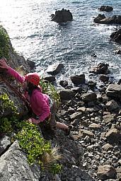 Sienna climbing at Titahi Bay.jpg: 683x1024, 434k (2014 Jul 21 06:48)
