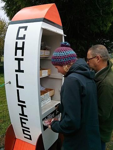 Roadside chillis in Wairau Valley