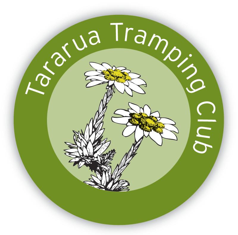 Option 1a Revitalisation of current logo