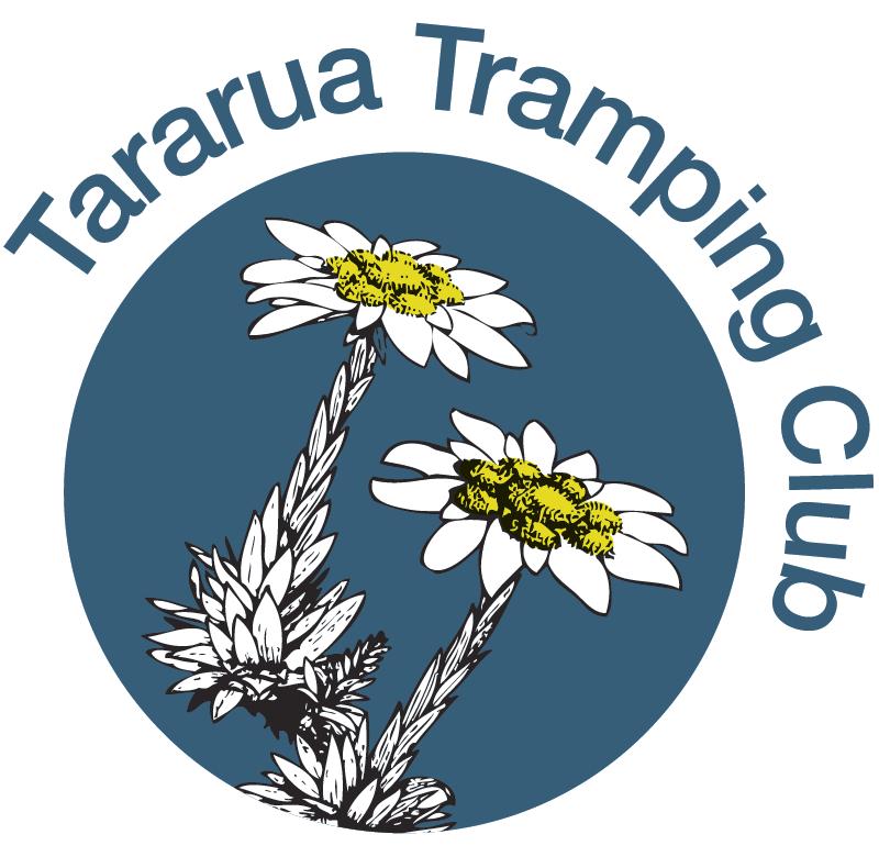 Option 1d Revitalisation of current logo