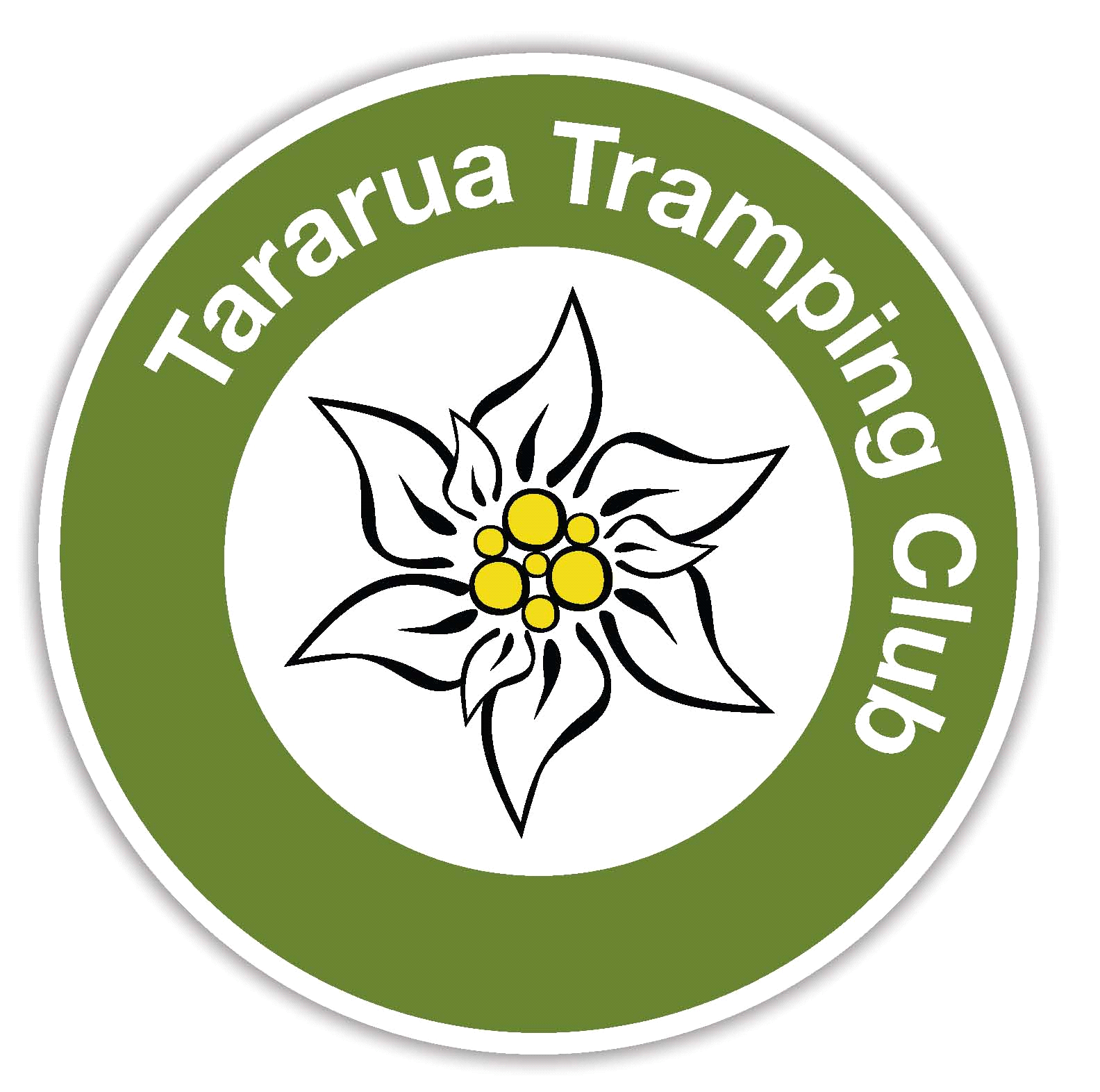 Option 2a Stylised Edelweiss flower stamp logo