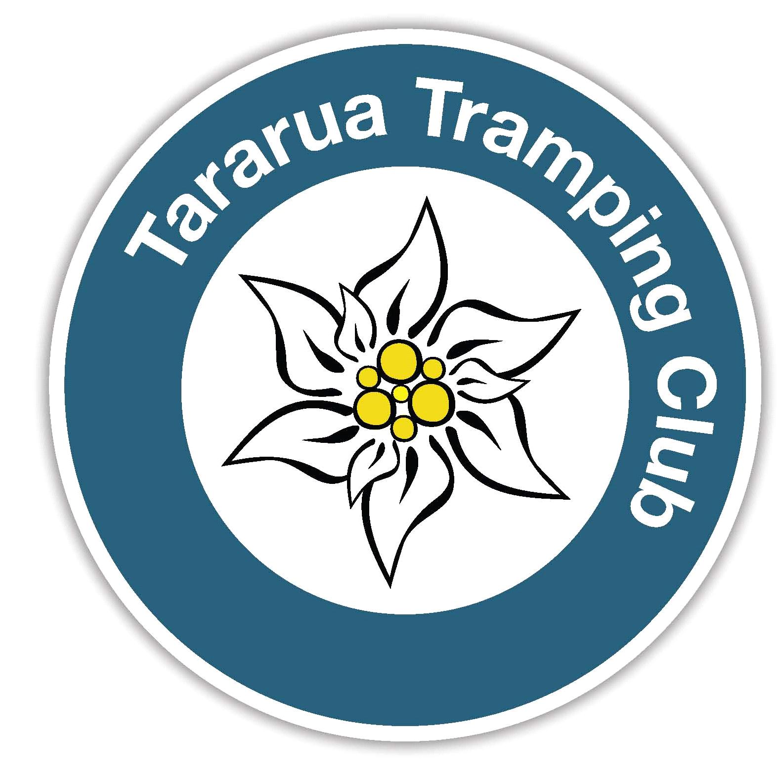 Option 2b Stylised Edelweiss flower stamp logo