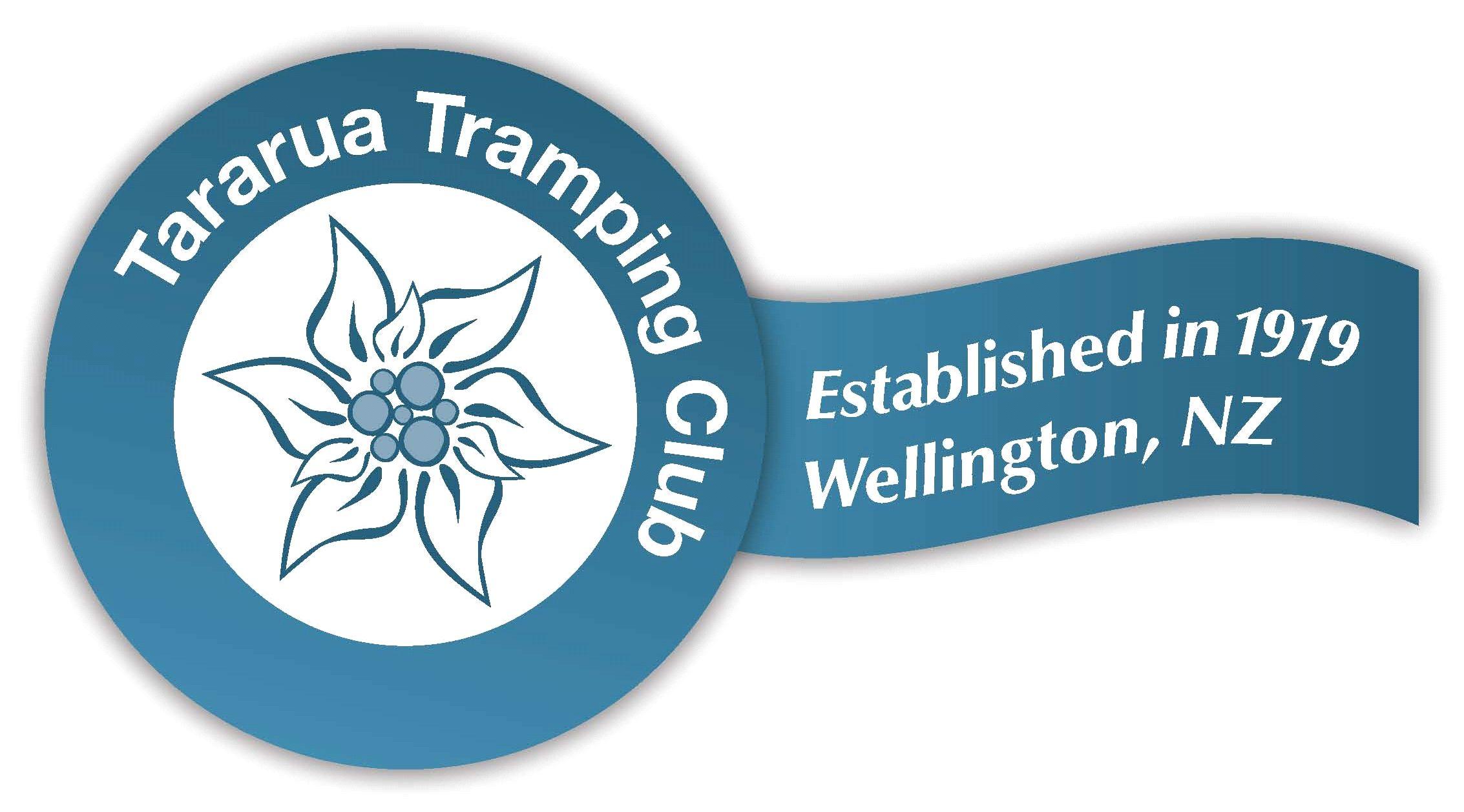 Option 3 Stylised ribbon logo