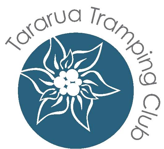 Option 4 Highly stylised Edelweiss flower circle logo