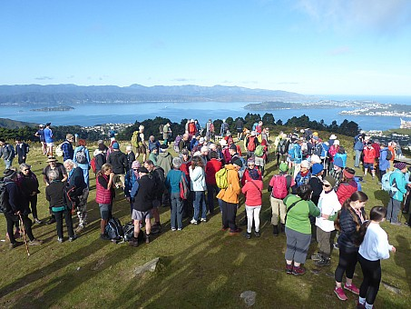 click on the photo and click again on the photo to download the original image  2019-06-30 14.35.40 On Mt Kaukau at the end of the walk reduced