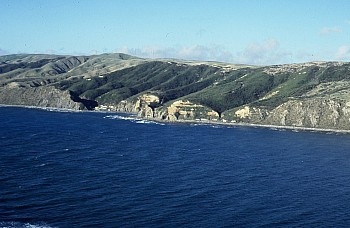 Coast north of Makara Estuary, Owhariu Bay, photograph by Barbara Mitcalfe