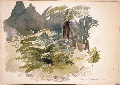 Field, Isabel Jane, 1867-1950. [Hodgkins, Isabel Jane] 1867-1950